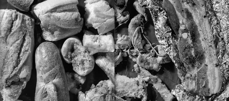 Lucia-guanaes-et-marc-dumas-inventaire-d-une-poubelle-serie-photo-07
