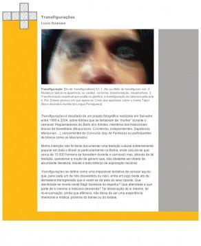 Lucia Guanaes - galerie - erratica.com.br
